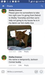 connor jackson w:shelley emerson