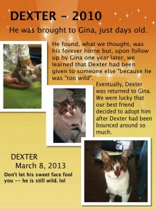 Dexter 2010 - Before and After