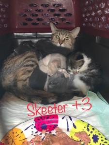 skeeter+3 3:21:20